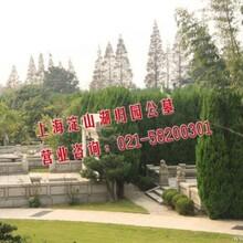 上海青浦静园公墓上海淀山湖归园墓区介绍首推低价墓穴