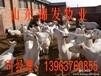 青山羊多少钱一只?山东青山羊养殖基地。