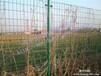 养殖护栏网,养殖护栏网价格,最大的养殖护栏网厂家