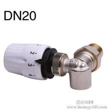 DN20三维角式恒温阀