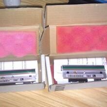 汕尾海豐縣斑馬打印頭供應商,斑馬專用打印頭圖片