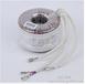 环型控制变压器优质环形变压器制造商