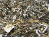 厦门废品回收公司废塑料废金属废铝废钨钢二手物资
