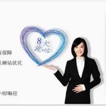 深圳域名服务坪山网站建设首选傲网科技