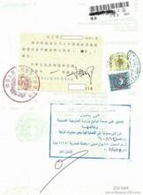 埃及协议领事馆认证