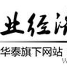 2013-2018年中国电子认证服务行业发展状况及投资价值研究报告