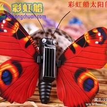 太阳能昆虫玩具,太阳能玩具批发网,彩虹船太阳能玩具图片