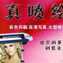 朱泾大型喷绘写真枫泾做喷绘送货上门石化喷绘写真朱泾广告