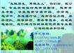 河内胡志明市越南语翻译导游商务考察我们专业提供