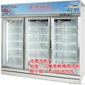 冰雪厂直销各种商用冷柜美宜家便利店饮料冷藏展示柜