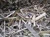 厦门金属废品回收