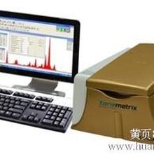 X射线荧光光谱贵金属检测仪图片