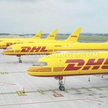 红桥区国际快递红桥区国际空运服务红桥DHL国际快递