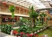 寿光生态餐厅温室大棚建设厂家询价寿光春源
