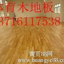 健身房地面木地板铺装价格,健身房塑胶运动地板多少钱,健身房PVC地板胶价格图片
