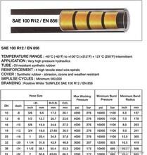 意大利双威胶管,DH300重役型石油产品,吸入排放用管