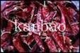 新疆红辣椒