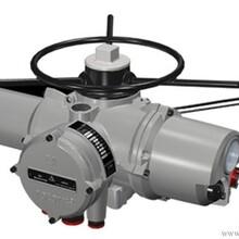 原装德国欧玛执行器SA07.1GS50.3-F07现卖