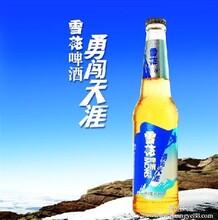 供应哈尔滨冰纯11度500MLx12批发湖北武汉市酒