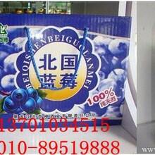 肌肤健康管理第一品牌大兴安岭蓝莓冲饮