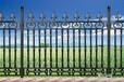 供应朗县玛钢铸造围墙护栏豪华合金透景围墙球墨铸铁围墙护栏