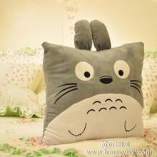 正品龙猫抱枕宫崎骏漫画公仔居家沙发靠垫