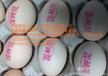 河南一个很简单方便的鸡蛋喷码机,在瞬时间让您的鸡蛋或蛋类品提高价位
