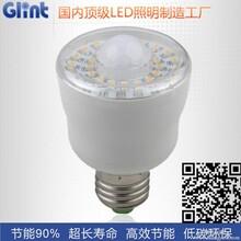 LED感应灯-巨树照明