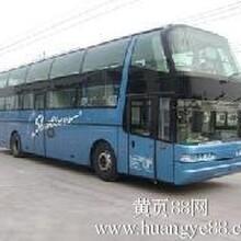 汽车长途汽车郑州到乌鲁木齐长途汽车有车吗票价多少钱