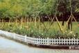葫芦岛交通护栏草坪护栏