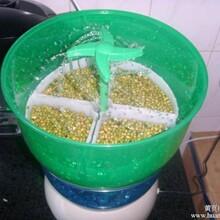 成都豆芽机,全自动豆芽机价格,家用豆芽机价格