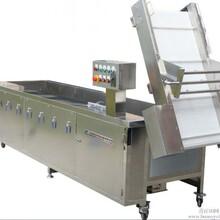 供应豪华型洗菜机供应洗菜机