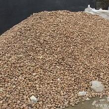 广西鹅卵石,南宁鹅卵石厂,贵港鹅卵石价格