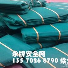 广州佛山粤西地区直销建筑安全网绿色安全网防护网