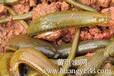 专家指导安徽水蛭养殖成本安徽水蛭养殖安徽水蛭的养殖