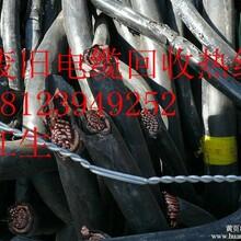 广州电线电缆回收公司广州电线电缆回收厂家广州电线电缆回收公司