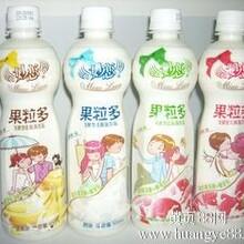 广西小洋人妙恋奶茶香芋味饮料批发