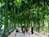 湖北生态餐厅设计,湖北生态餐厅施工
