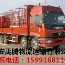 西安到陇南货运专线岩昌成县物流专线