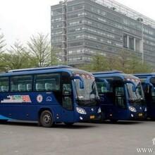 长安客车出租东莞长安客车出租到惠州博罗市区电话