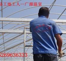 济南市现代育苗场图片