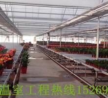 莒县山东新闻现代农业图片