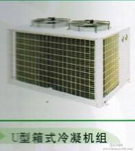 冷冻机组沈阳商用冷冻机组杭州谷轮冷冻机组沈阳总代理德诺尔图片