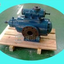 供应HSN2900-46W1高温粘性产品精炼输送泵图片