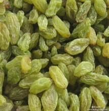 新疆绿葡萄干特色零食散装休闲食品批发商蜜饯果干18斤/箱图片