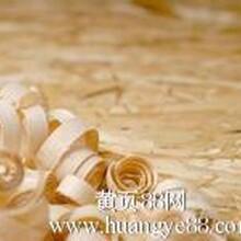俄罗斯木材原木板块木皮进口清关口岸