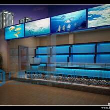 海南省海鲜池,酒店海鲜池,海鲜池工程,超市海鲜池图片