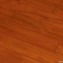 湖南国泽木业纯实木地热地板长沙地暖地板