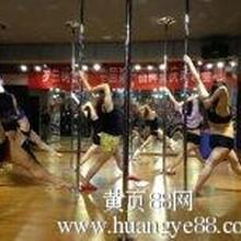 重庆罗兰钢管舞重庆首家培训