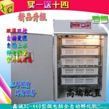 鸽子孵化器鹌鹑孵化箱全自动孵化设备双温双控鑫城孵化机